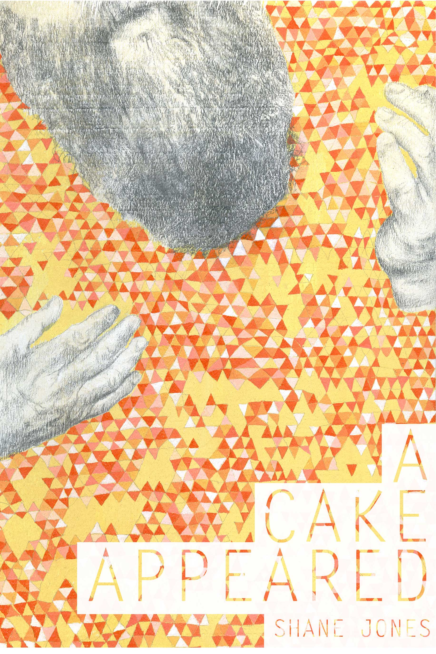 a cake appeared front cover